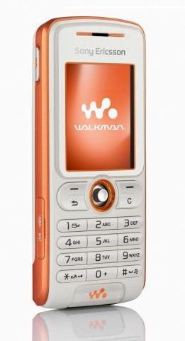 SonyEricsson W200